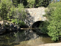Lower Falls 1